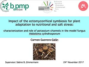 Thesis defended by Carmen Guerrero-Galán