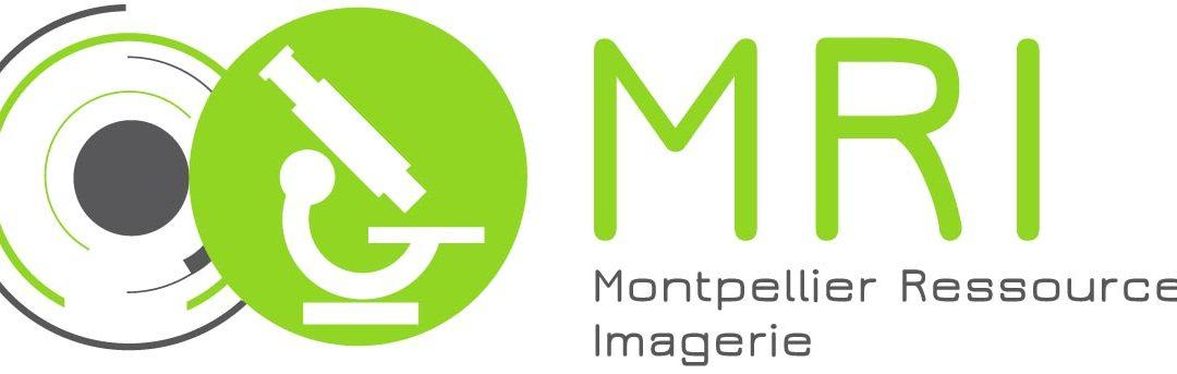Journée Imagerie MRI