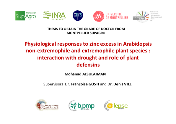 Thesis defended by Mohanad Alsulaiman