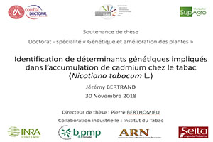 Thesis defended by Jérémy Bertrand