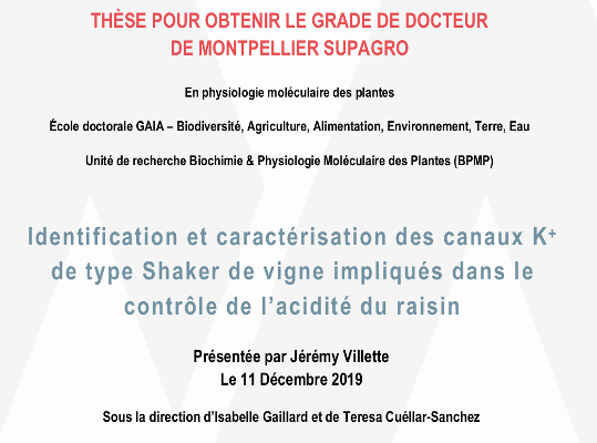 Thesis defense: Jérémy Villette
