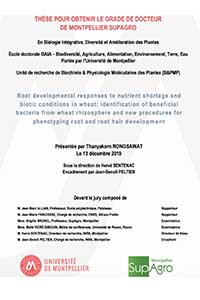 Thesis defense: Thanyakorn Rongsawat