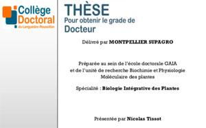 Thèse soutenue par Nicolas Tissot