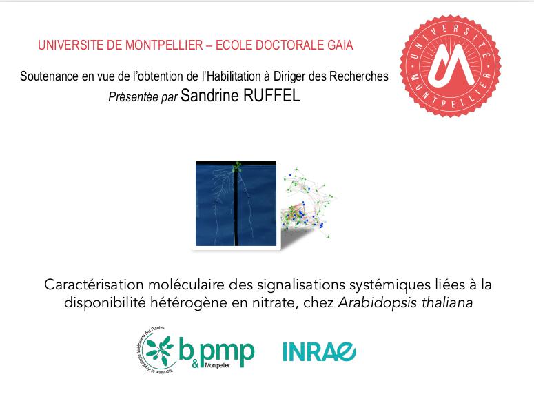 HDR soutenue par Sandrine Ruffel